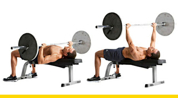 Top Notch Bench Press Chest Exercises Muscle O Mania