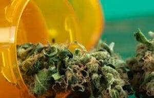 Can Medical Marijuana Treat Chronic Pain?